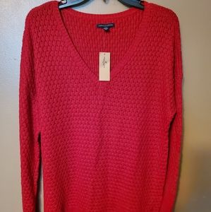 Women's American Eagle Knitted Vneck Sweater